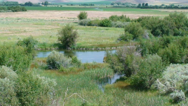 301 moved permanently for Silver creek idaho fishing