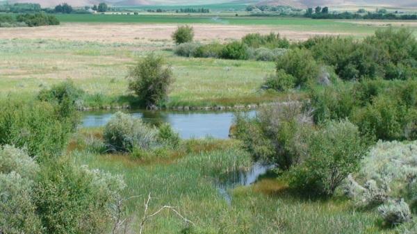 Fishing adventures at Silver Creek await!